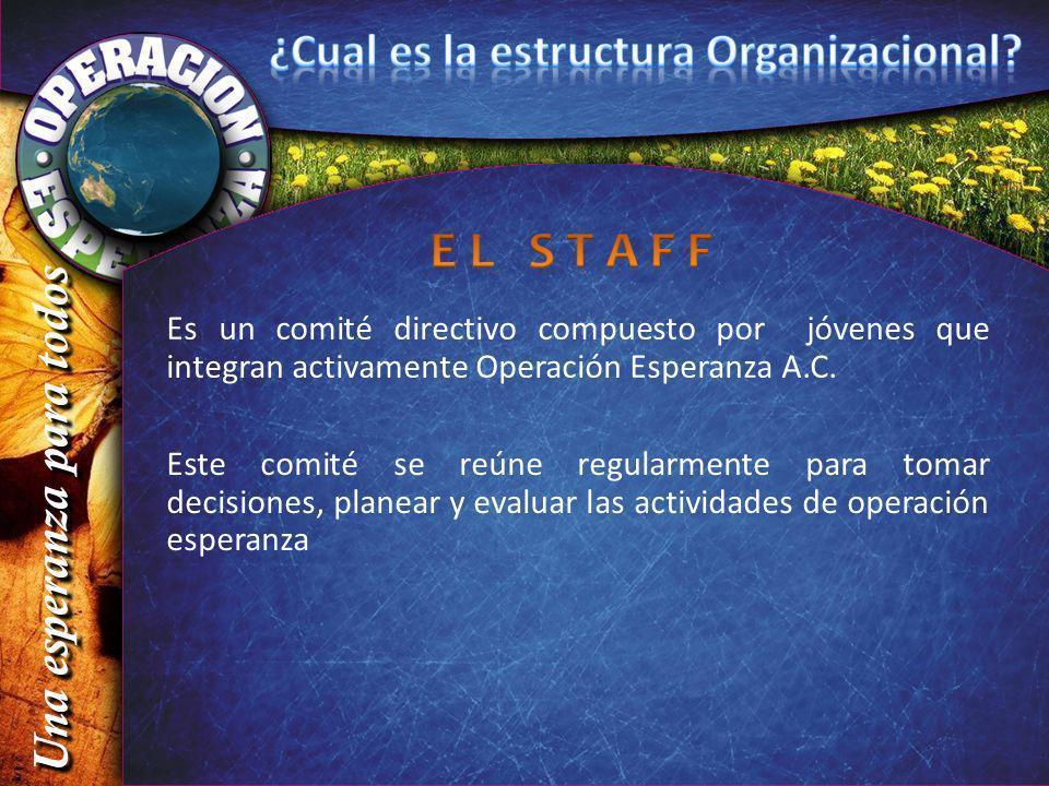 Es un comité directivo compuesto por jóvenes que integran activamente Operación Esperanza A.C. Este comité se reúne regularmente para tomar decisiones