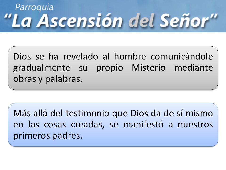 Dios se ha revelado al hombre comunicándole gradualmente su propio Misterio mediante obras y palabras. Más allá del testimonio que Dios da de sí mismo