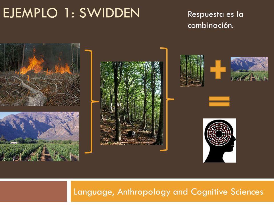 EJEMPLO 1: SWIDDEN Language, Anthropology and Cognitive Sciences Respuesta es la combinación :