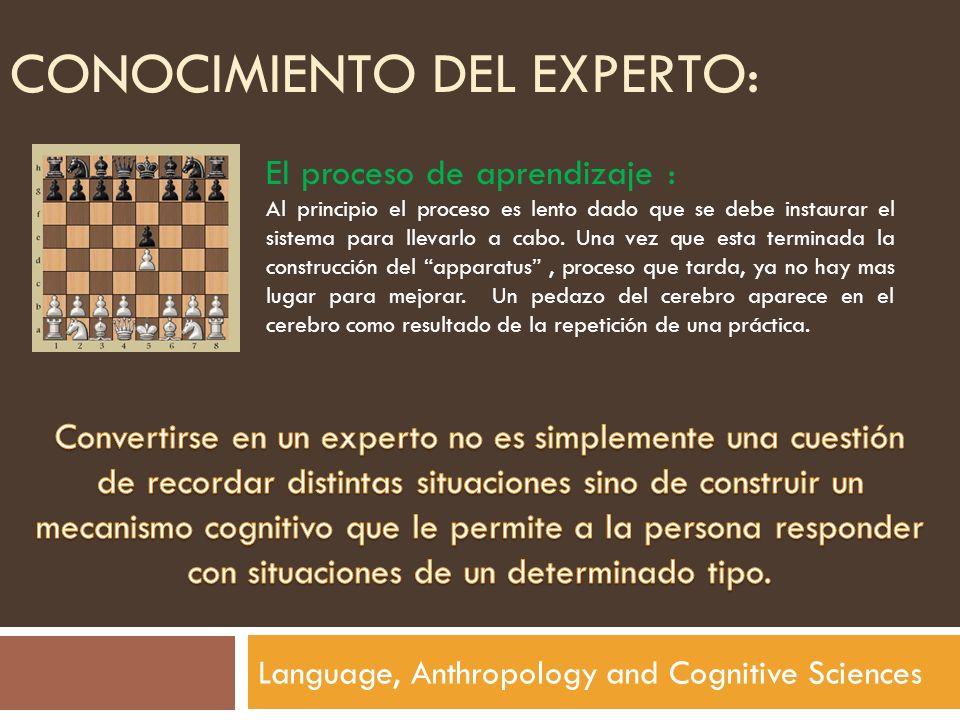 CONOCIMIENTO DEL EXPERTO: Language, Anthropology and Cognitive Sciences El proceso de aprendizaje : Al principio el proceso es lento dado que se debe