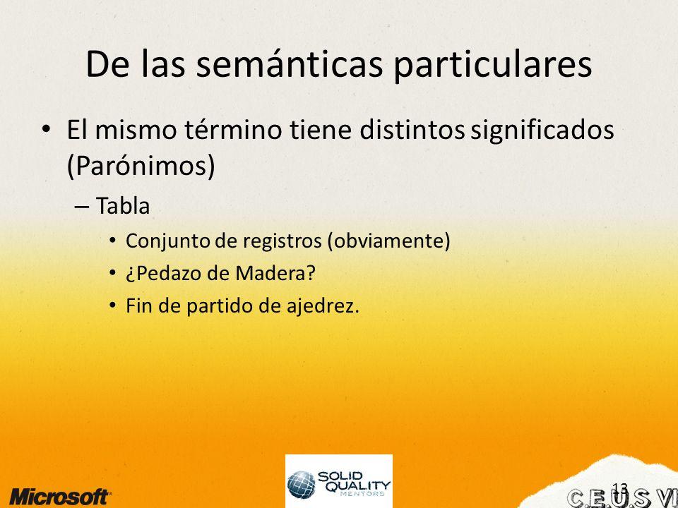 13 De las semánticas particulares El mismo término tiene distintos significados (Parónimos) – Tabla Conjunto de registros (obviamente) ¿Pedazo de Madera.