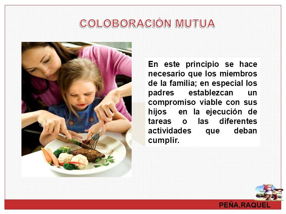PEÑA,RAQUEL En este principio se hace necesario que los miembros de la familia; en especial los padres establezcan un compromiso viable con sus hijos