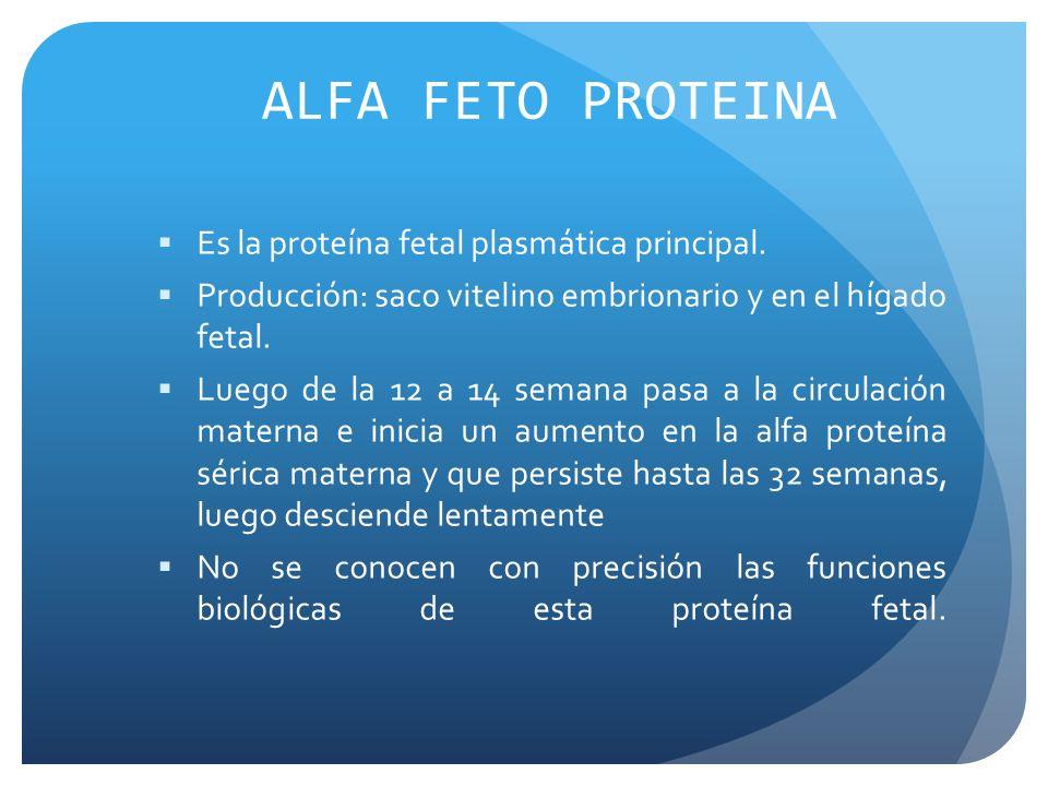ALFA FETO PROTEINA Es la proteína fetal plasmática principal. Producción: saco vitelino embrionario y en el hígado fetal. Luego de la 12 a 14 semana p