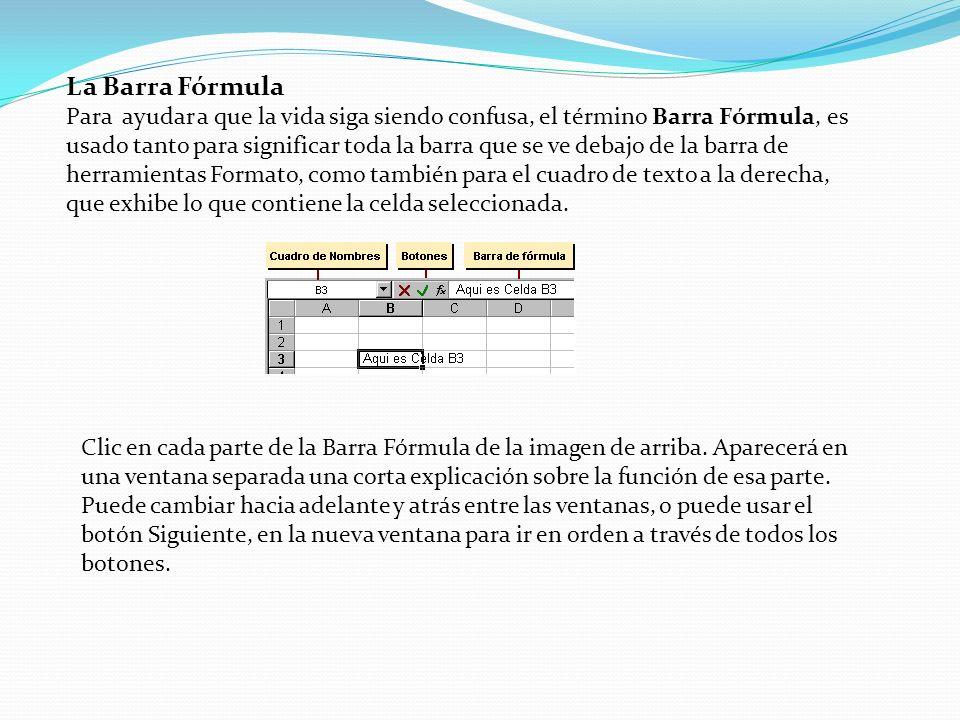 La Barra Fórmula Para ayudar a que la vida siga siendo confusa, el término Barra Fórmula, es usado tanto para significar toda la barra que se ve debaj
