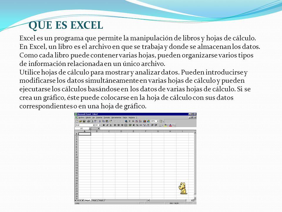 Excel es un programa que permite la manipulación de libros y hojas de cálculo. En Excel, un libro es el archivo en que se trabaja y donde se almacenan