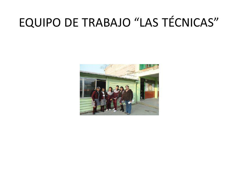 EQUIPO DE TRABAJO LAS TÉCNICAS