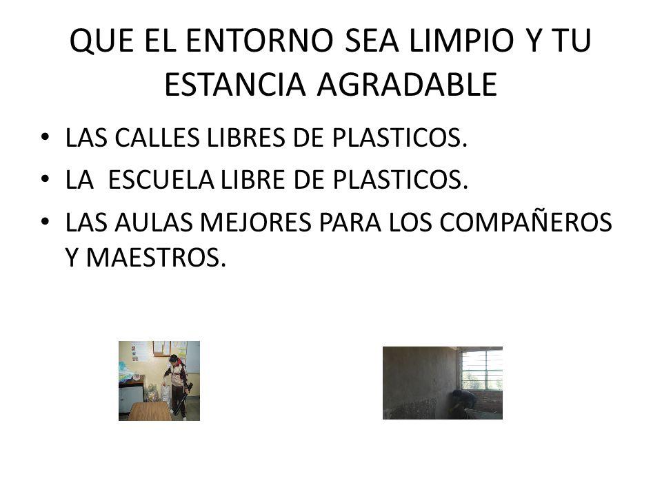 QUE EL ENTORNO SEA LIMPIO Y TU ESTANCIA AGRADABLE LAS CALLES LIBRES DE PLASTICOS.