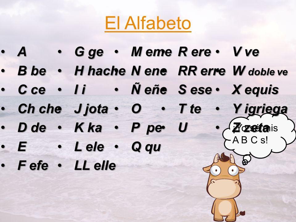 ¿Cómo se escribe tu nombre? S E Ñ O R A W E B BS E Ñ O R A W E B B