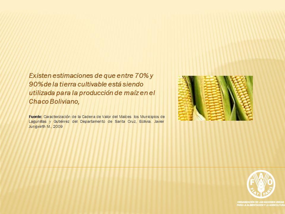 Existen estimaciones de que entre 70% y 90%de la tierra cultivable está siendo utilizada para la producción de maíz en el Chaco Boliviano, Fuente: Car