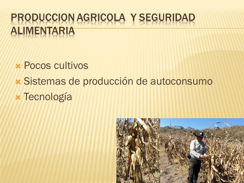 Pocos cultivos Sistemas de producción de autoconsumo Tecnología
