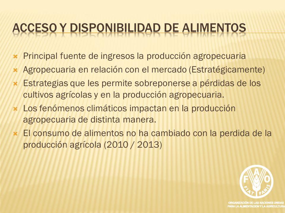 Principal fuente de ingresos la producción agropecuaria Agropecuaria en relación con el mercado (Estratégicamente) Estrategias que les permite sobrepo