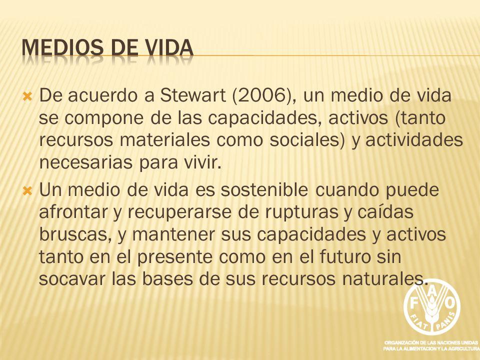 De acuerdo a Stewart (2006), un medio de vida se compone de las capacidades, activos (tanto recursos materiales como sociales) y actividades necesaria