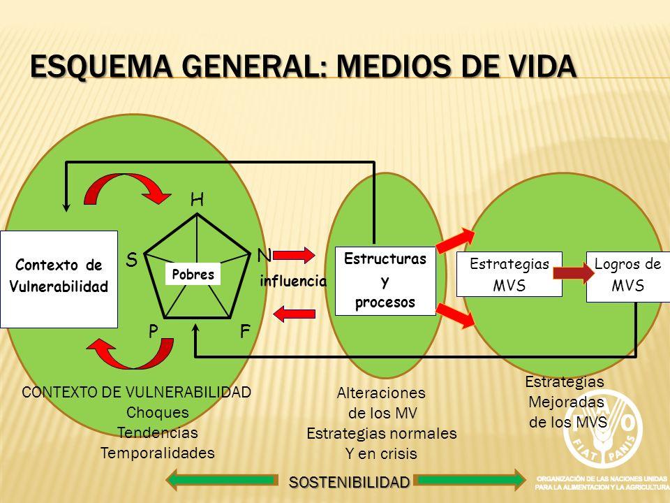 ESQUEMA GENERAL: MEDIOS DE VIDA Estructuras y procesos N S F P H Pobres Contexto de Vulnerabilidad influencia Estrategias MVS Logros de MVS CONTEXTO D