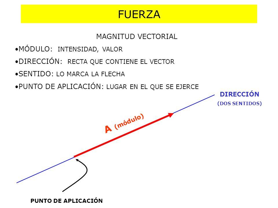 DIRECCIÓN (DOS SENTIDOS) FUERZA A (módulo) PUNTO DE APLICACIÓN MAGNITUD VECTORIAL MÓDULO: INTENSIDAD, VALOR DIRECCIÓN: RECTA QUE CONTIENE EL VECTOR SE