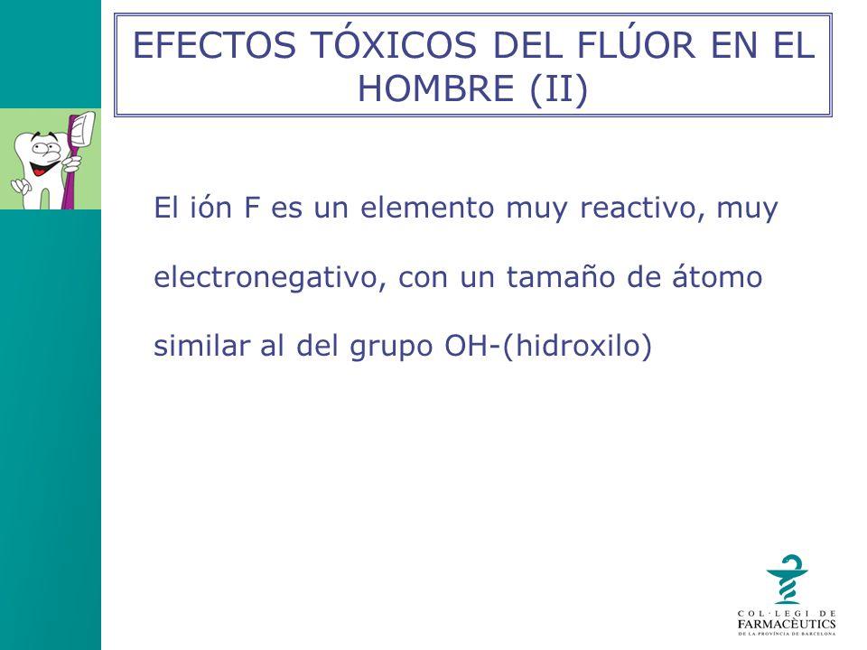 El ión F es un elemento muy reactivo, muy electronegativo, con un tamaño de átomo similar al del grupo OH-(hidroxilo) EFECTOS TÓXICOS DEL FLÚOR EN EL