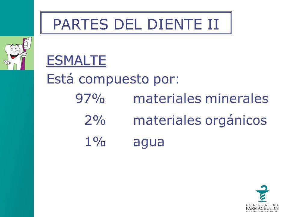 ESMALTE Está compuesto por: 97%materiales minerales 2% materiales orgánicos 1%agua PARTES DEL DIENTE II