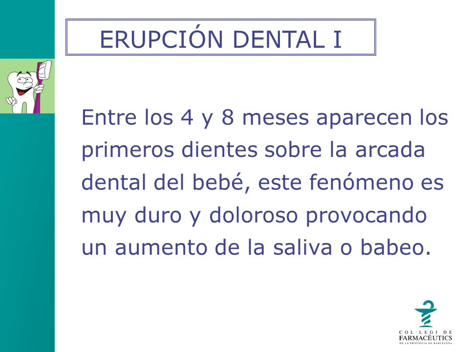 Entre los 4 y 8 meses aparecen los primeros dientes sobre la arcada dental del bebé, este fenómeno es muy duro y doloroso provocando un aumento de la