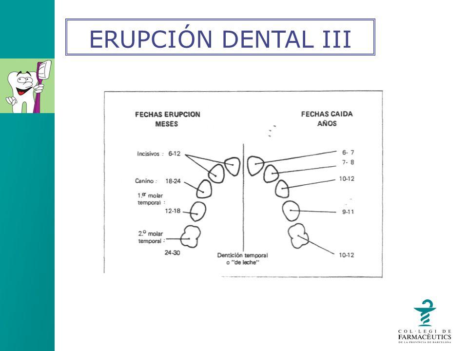 ERUPCIÓN DENTAL III