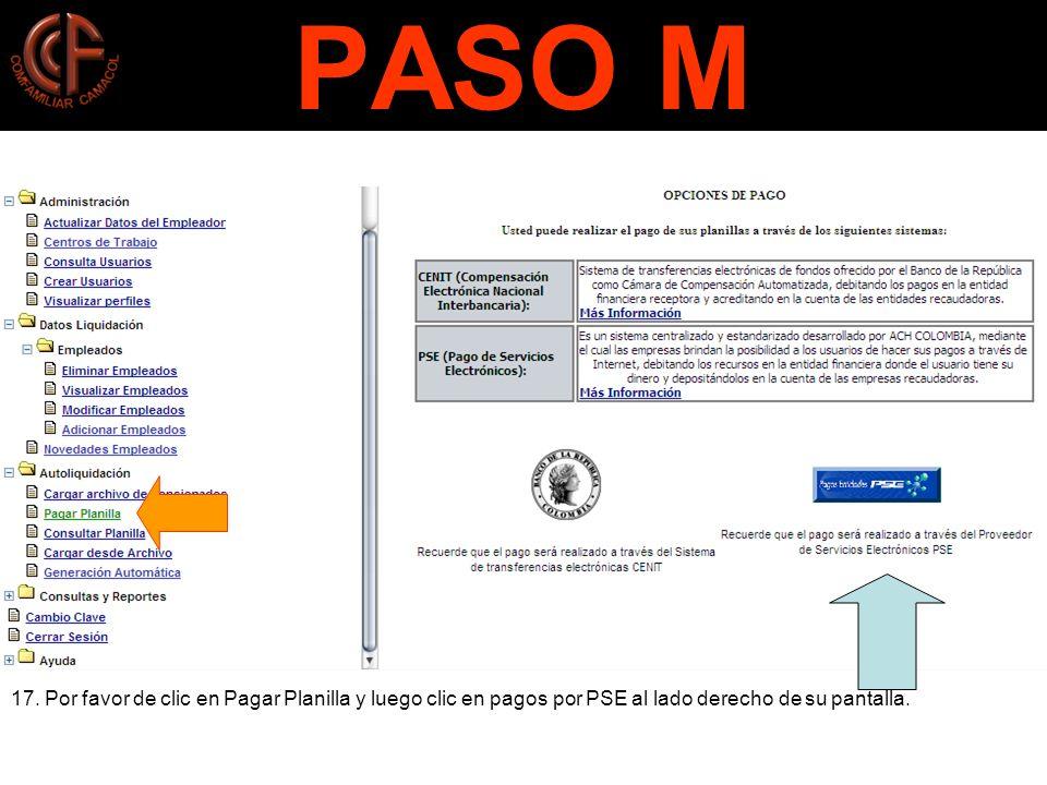PASO M 17.