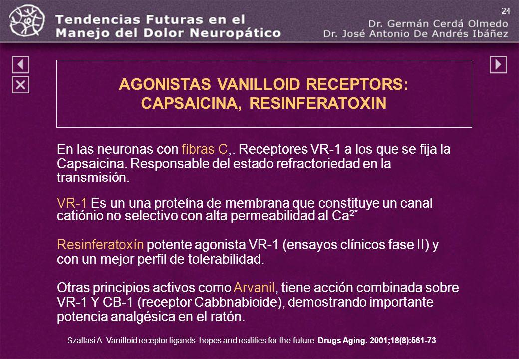 AGONISTAS VANILLOID RECEPTORS: CAPSAICINA, RESINFERATOXIN En las neuronas con fibras C,. Receptores VR-1 a los que se fija la Capsaicina. Responsable