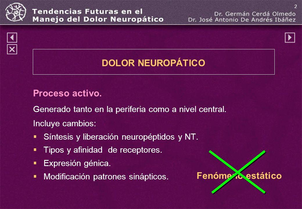 Fenómeno estático Proceso activo. Generado tanto en la periferia como a nivel central. Incluye cambios: Síntesis y liberación neuropéptidos y NT. Tipo