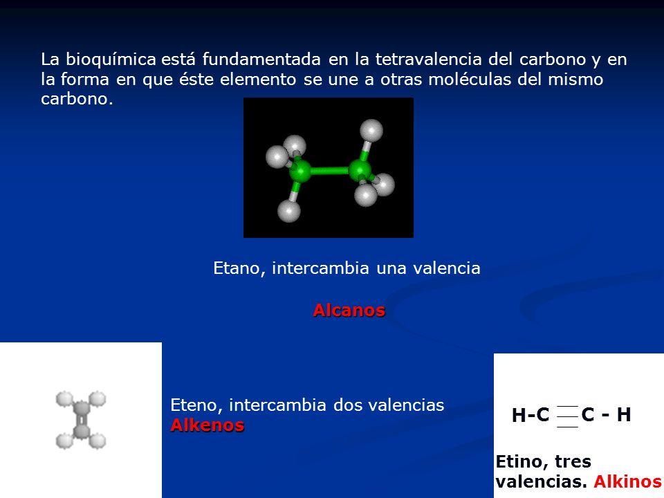 La bioquímica está fundamentada en la tetravalencia del carbono y en la forma en que éste elemento se une a otras moléculas del mismo carbono. Etano,