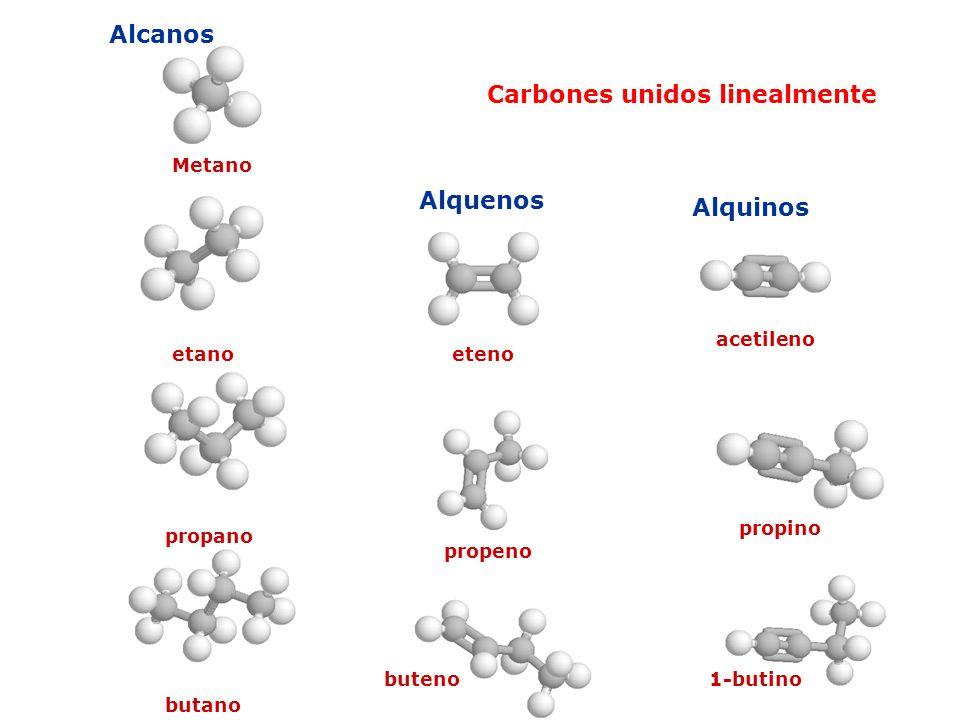 Carbones unidos linealmente Alcanos Alquenos Alquinos Metano etano propano butano eteno propeno buteno acetileno propino 1-butino