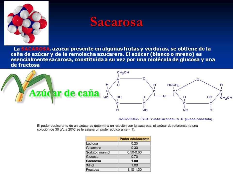 Sacarosa La SACAROSA, azucar presente en algunas frutas y verduras, se obtiene de la caña de azúcar y de la remolacha azucarera. El azúcar (blanco o m