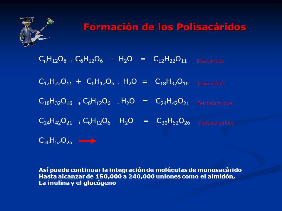 C 6 H 12 O 6 + C 6 H 12 O 6 - H 2 O = C 12 H 22 O 11 Disacáridos C 12 H 22 O 11 + C 6 H 12 O 6 - H 2 O = C 18 H 32 O 16 Trisacáridos C 18 H 32 O 16 +