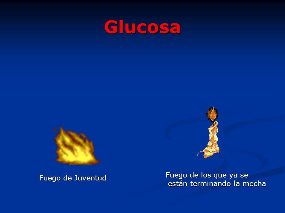 Glucosa Fuego de Juventud Fuego de los que ya se están terminando la mecha están terminando la mecha