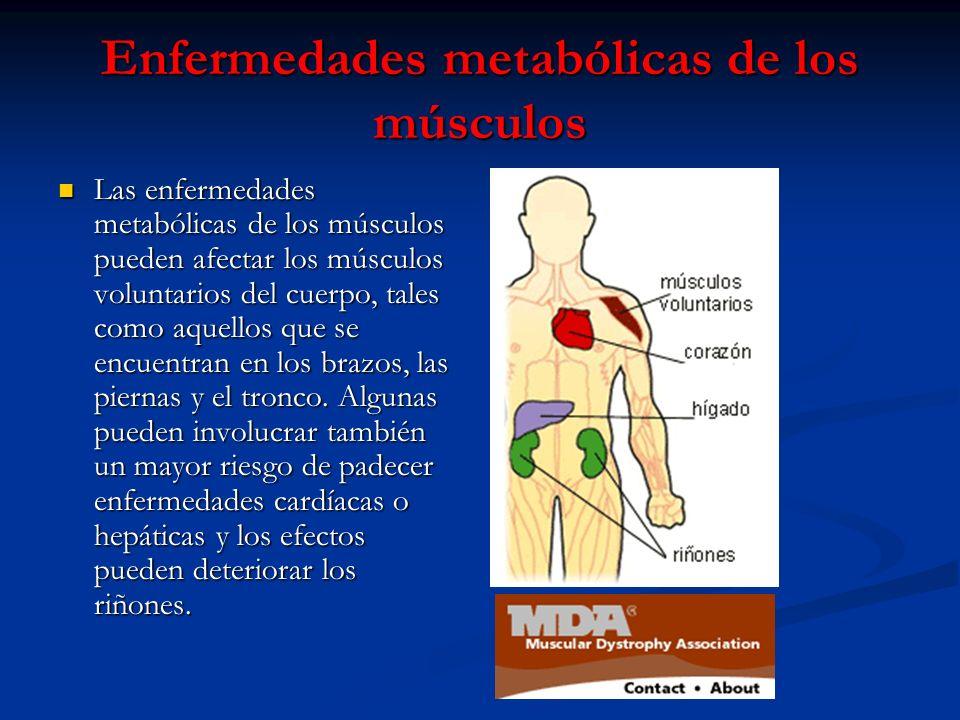 Enfermedades metabólicas de los músculos Las enfermedades metabólicas de los músculos pueden afectar los músculos voluntarios del cuerpo, tales como a