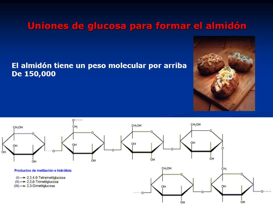Uniones de glucosa para formar el almidón El almidón tiene un peso molecular por arriba De 150,000