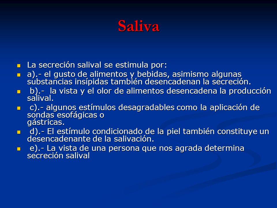 Saliva La secreción salival se estimula por: La secreción salival se estimula por: a).- el gusto de alimentos y bebidas, asimismo algunas substancias