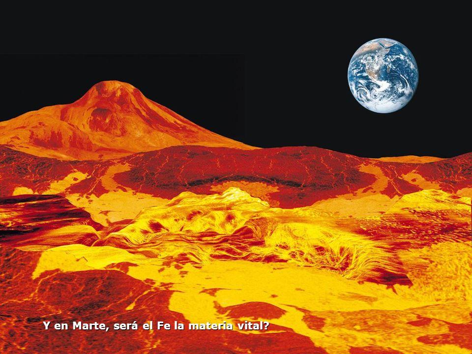 Y en Marte, será el Fe la materia vital?