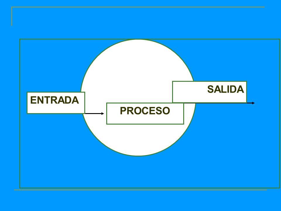 ENTRADA SALIDA PROCESO