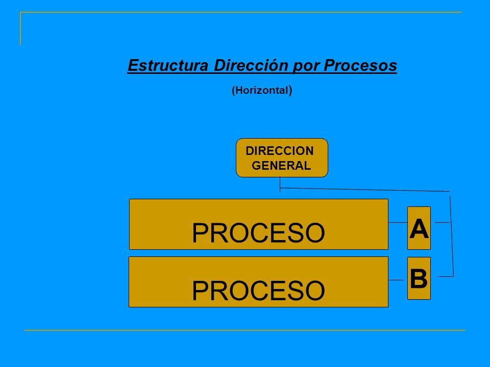 PROCESO Estructura Dirección por Procesos (Horizontal ) PROCESO A B