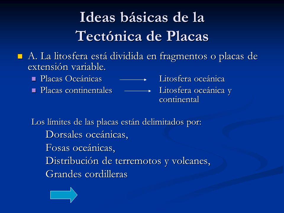Ideas básicas de la Tectónica de Placas A.