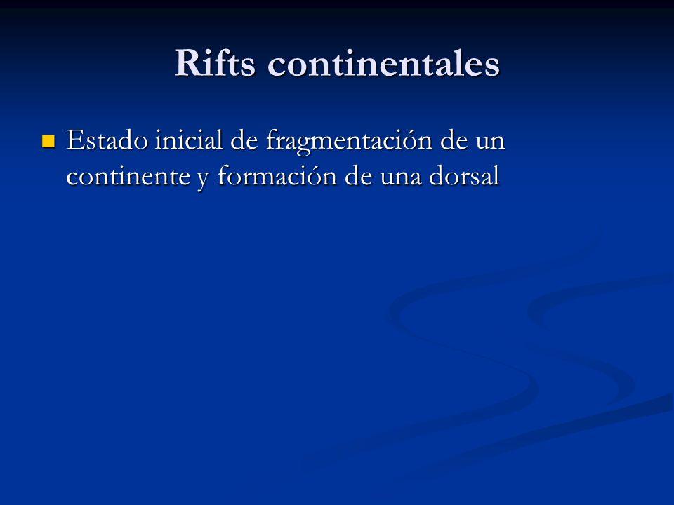 Rifts continentales Estado inicial de fragmentación de un continente y formación de una dorsal Estado inicial de fragmentación de un continente y formación de una dorsal