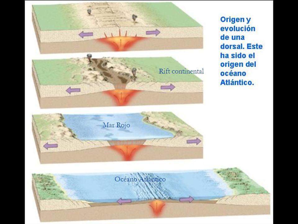 Rift continental Mar Rojo Océano Atlántico
