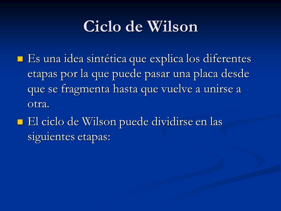 Ciclo de Wilson Es una idea sintética que explica los diferentes etapas por la que puede pasar una placa desde que se fragmenta hasta que vuelve a unirse a otra.