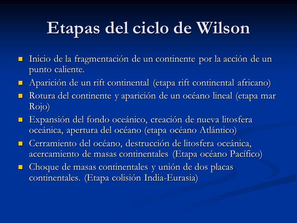 Etapas del ciclo de Wilson Inicio de la fragmentación de un continente por la acción de un punto caliente.