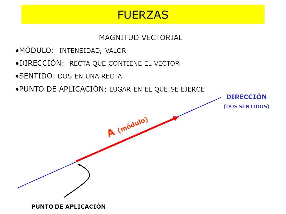COMPOSICIÓN DE FUERZAS DE LA MISMA DIRECCIÓN R= F 1 + F 2 R=F 1 - F 2 F1F1 F2F2 F1F1 F2F2 Para componer o sumar dos fuerzas no podemos operar como si fueran números.