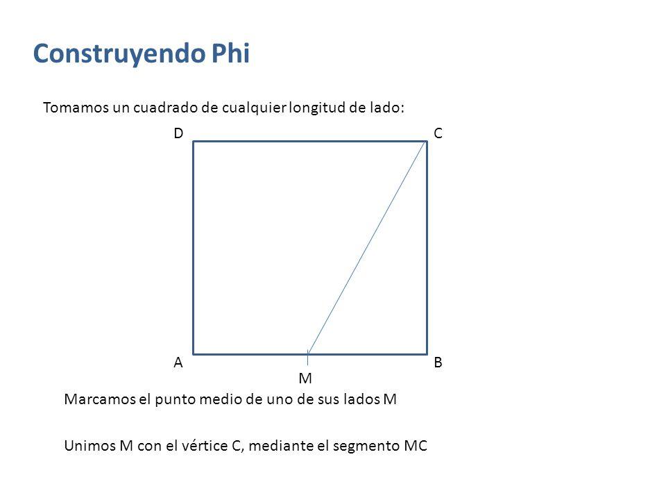 Construyendo Phi Tomamos un cuadrado de cualquier longitud de lado: AB Marcamos el punto medio de uno de sus lados M M Unimos M con el vértice C, medi