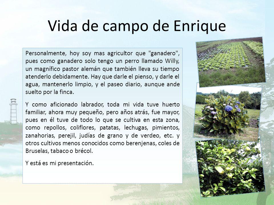 Vida de campo de Enrique ¡Hola! Soy amante del campo, y por eso he escrito sobre diversos aspectos del medio rural. Además, practico y he practicado e