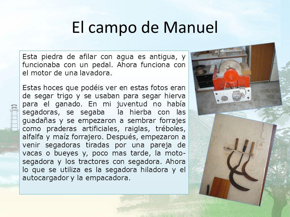El campo de Manuel Me encanta hacer trabajos en el pequeño taller que tengo. Hago de todo, en madera, mecánica, fontanería y también trabajo algo como