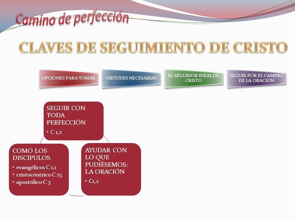 OPCIONES DE VIDA: COMO LOS DISCÍPULOS DE JESÚS EVANGÉLICO: RADICALIDAD (1,1) CRISTOCÉNTRICO: EL MAESTRO AL CENTRO (C 25) APOSTÓLICO: DEDICADAS A LA CAUSA DE CRISTO (C 3)