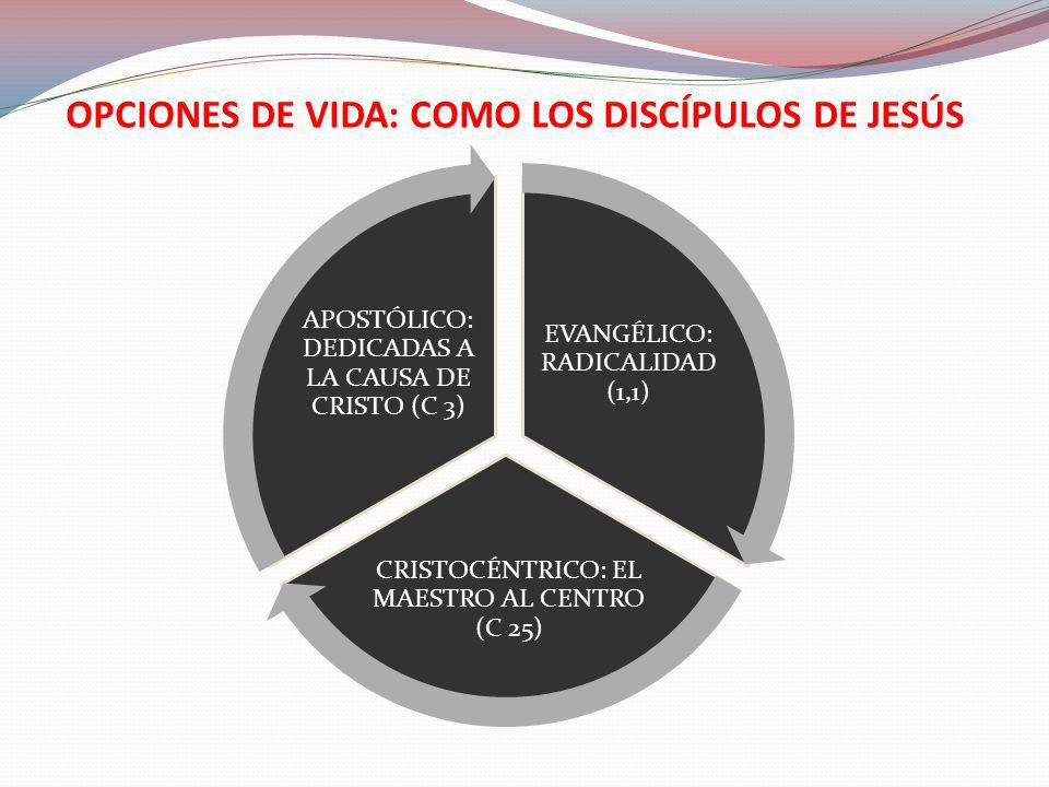 OPCIONES DE VIDA: COMO LOS DISCÍPULOS DE JESÚS EVANGÉLICO: RADICALIDAD (1,1) CRISTOCÉNTRICO: EL MAESTRO AL CENTRO (C 25) APOSTÓLICO: DEDICADAS A LA CA