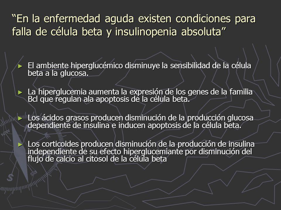 En la enfermedad aguda existen condiciones para falla de célula beta y insulinopenia absoluta El ambiente hiperglucémico disminuye la sensibilidad de la célula beta a la glucosa.