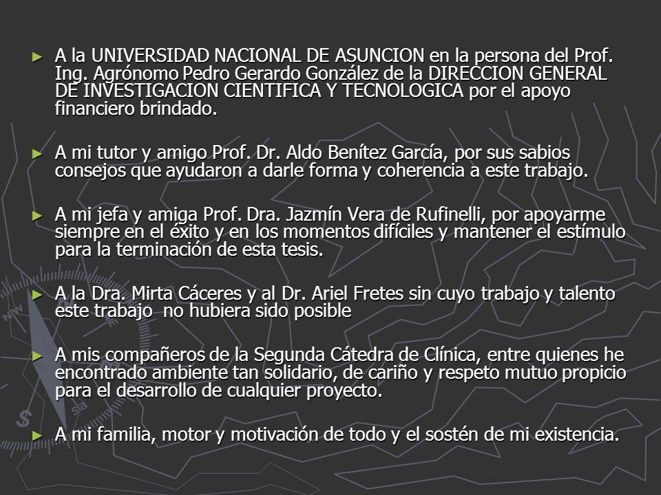A la UNIVERSIDAD NACIONAL DE ASUNCION en la persona del Prof.