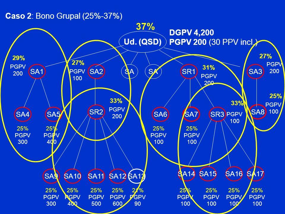 Ud. (QSD) SA2SR1 PGPV 200 (30 PPV incl.) Caso 2: Bono Grupal (25%-37%) SA1SA3 SA4SA5 SR2 SA7 SA6SR3 SA8 SA9SA10SA11SA12SA13 SA15SA16SA17SA14 25% PGPV